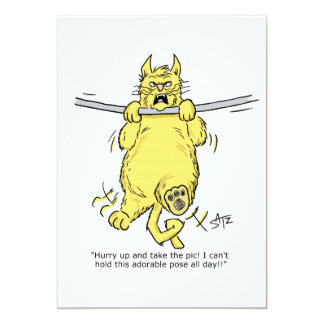 Cute cat hanging from rod card
