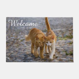 Cute Cat Kittens Friends Stony Path Photo Welcome Doormat