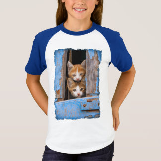 Cute Cat Kittens in a Blue Vintage Window Photo - T-Shirt