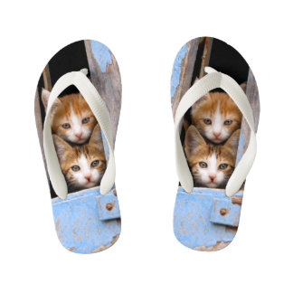 Cute Cat Kittens in Blue Vintage Window Photo Kids Kid's Flip Flops