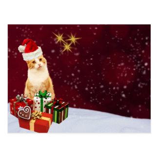 Cute Cat Merry Christmas Greetings Postcard