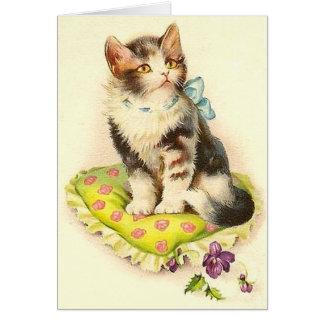 Cute Cat On Pillow Card