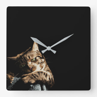 Cute cat playing Wall Clock