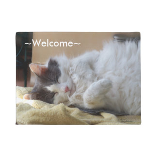 Cute cat sleeping Spiegeland Welcome Doormat