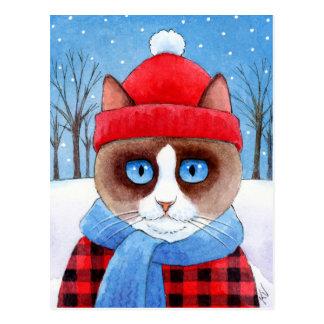 Cute cat snow Christmas Ragdoll Snowshoe postcard