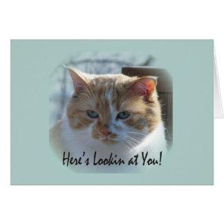 Cute Cat Vignette Greeting Card