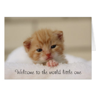 Cute Cat Welcome to the world baby greeting card