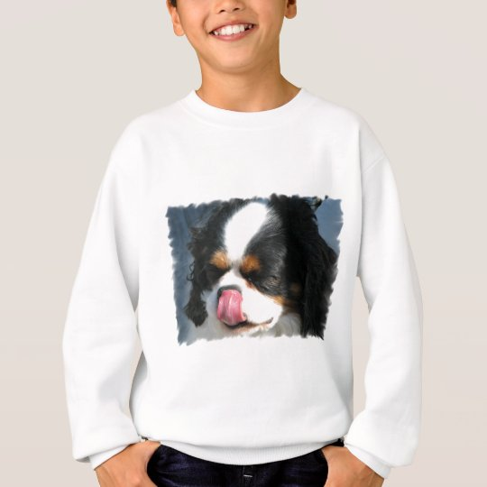 Cute Cavalier Spanial Dog  Youth Sweatshirt