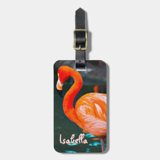 Cute, chic, pink orange flamingo photo custom name luggage tag
