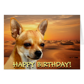 Cute chihuahua customizable greetings card