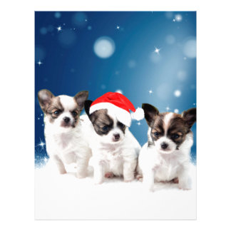 Cute Chihuahua Puppies with Santa Hat Christmas Letterhead