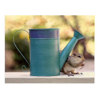 Cute Chipmunk and Watering Can Picture Post Cards