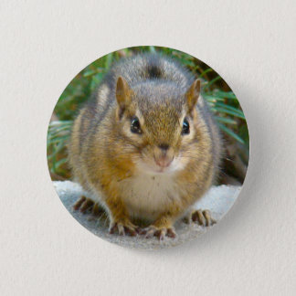 Cute Chipmunk Has His Eye On You 2 Inch Round Button