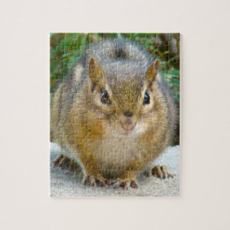 Cute Chipmunk Has His Eye On You Jigsaw Puzzle