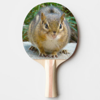 Cute Chipmunk Has His Eye On You Ping Pong Paddle