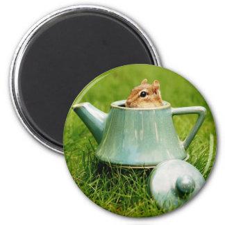 Cute Chipmunk in Teapot Magnet