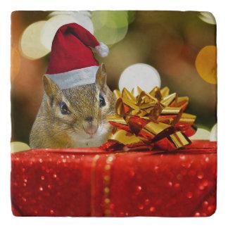 Cute Chipmunk Merry Christmas Trivet