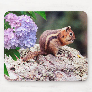 Cute Chipmunk - Mouse Pad