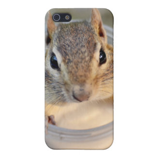 Cute Chipmunk Sitting in a Food Container Case For The iPhone 5