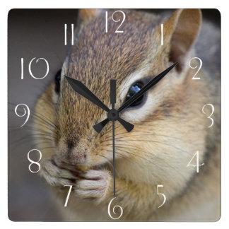 Cute chipmunk square wall clock