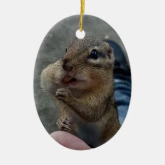 Cute chipmunk stuffing his cheeks ceramic ornament