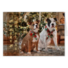 Cute Christmas Rescue Pitbull and America Bull Dog Card