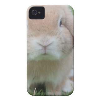 Cute Chubby Bunny Case-Mate iPhone 4 Cases