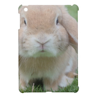 Cute Chubby Bunny iPad Mini Cases