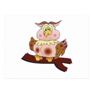 cute chubby owl post cards