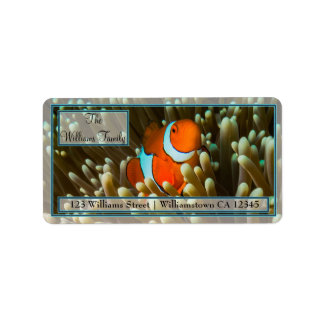 Cute Clownfish Great Barrier Reef Coral Sea Label