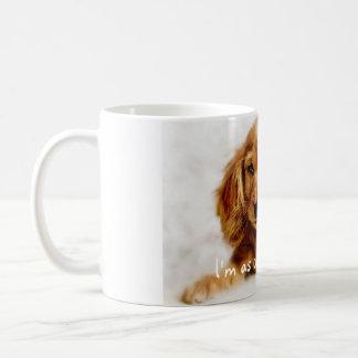 Cute Cocker Spaniel Dog Mug/Cup Coffee Mug