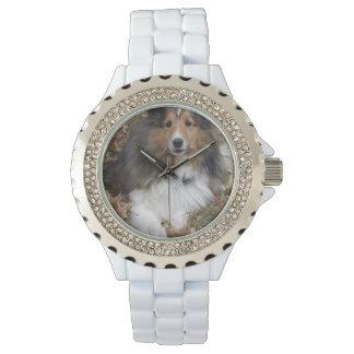 Cute Collie Watch