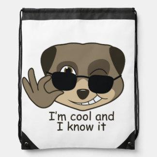 Cute, comic meerkat design drawstring backpack