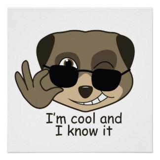 Cute, comic meerkat design. perfect poster