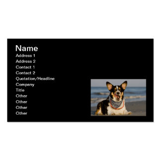 Cute Corgi Licking his Chops Pack Of Standard Business Cards