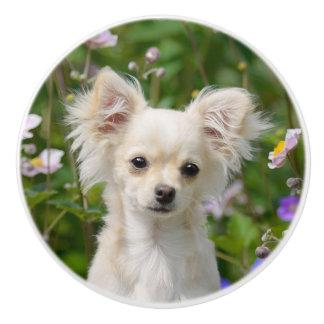 Cute cream Chihuahua Dog Puppy - Decorative Ceramic Knob