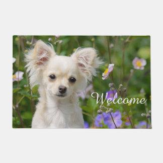 Cute cream Chihuahua Dog Puppy Pet Photo / Welcome Doormat