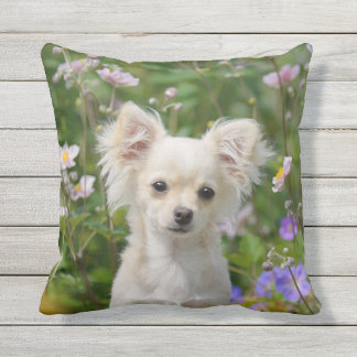 Cute cream Chihuahua Dog Puppy Photo for Outside Throw Pillow