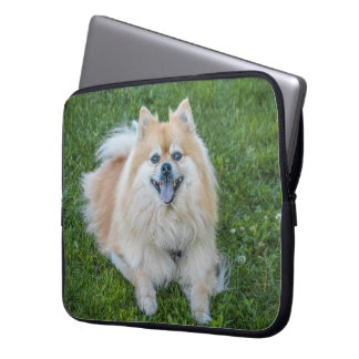 Cute Cream Sable Pomeranian Dog in the Grass Laptop Sleeve