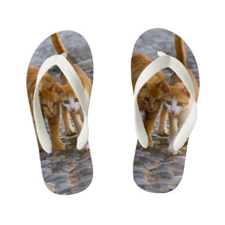 Cute Cuddly Cats Kittens Friends Stony Path - Kids Kid's Flip Flops