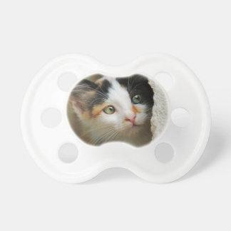 Cute Curious Cat Kitten Prying Eyes Head Photo Pet Pacifier
