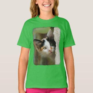 Cute Curious Cat Kitten Prying Eyes Photo - girl T-Shirt