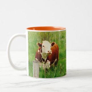 Cute Curious Cow 4Mal Two-Tone Coffee Mug