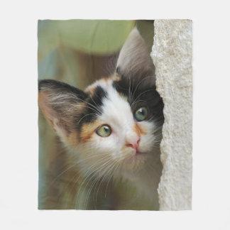 Cute Curious Kitten Prying Eyes, comfortable Fleece Blanket