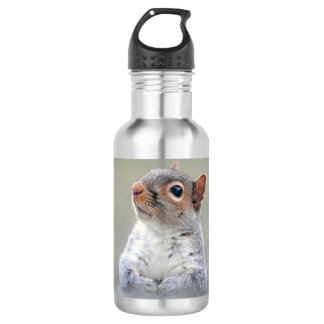 Cute Curious Squirrel Profile Photo 532 Ml Water Bottle