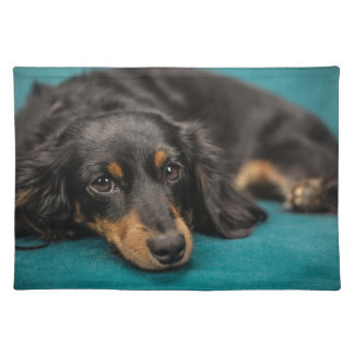 Cute Dachshund Laying Down Placemat