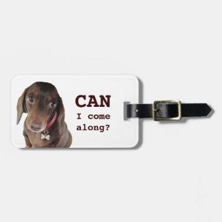 Cute dachshund luggage tag