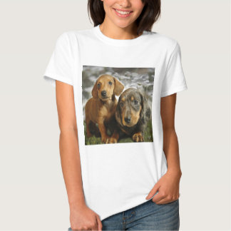 Cute Dachshund Puppies Tshirts
