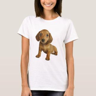 Cute Dachshund  Puppy (Cream Brown) Sitting T-Shirt