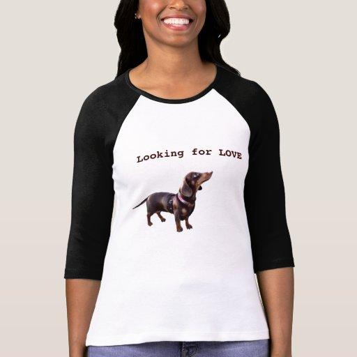 Cute Dachshund puppy looking for love T shirt